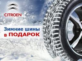 Власти Севастополя думают, что делать с ростом ДТП